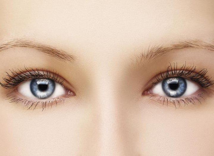Indicaciones para tu mirada